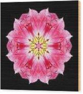 Tulip Peach Blossom IIi Flower Mandala Wood Print