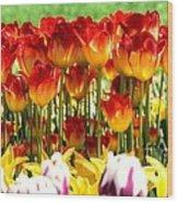 Tulip Stand In Mount Vernon Washington Wood Print