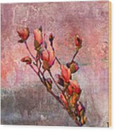 Tulip Tree Budding Wood Print