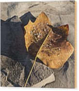 Tulip Tree Leaf - Frozen Raindrops In The Sunshine Wood Print