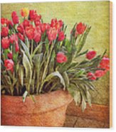 Tulip Tumble Wood Print