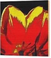 Tulip Underside Wood Print