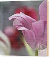 Tulip Whimsey Wood Print