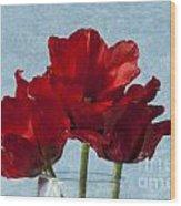 Tulips 1 Wood Print