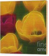 Tulips-6758-fractal Wood Print