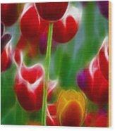 Tulips-7069-fractal Wood Print