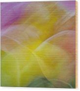 Tulips Abstract Wood Print