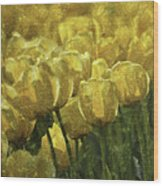 Tulips All Over Wood Print