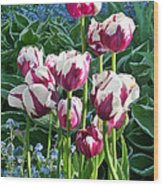 Tulips Among The Forget Me Nots Wood Print