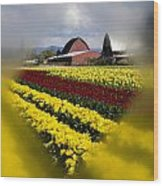 Tulips And Barn Wood Print