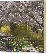 Tulips And Other Spring Flowers At Dallas Arboretum Wood Print