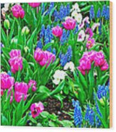 Tulips And Pansies And Grape Hyacinth By Lutheran Cathedral Of Helsinki-finland Wood Print