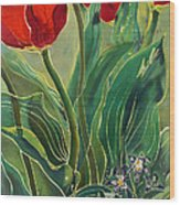 Tulips And Pushkinia Wood Print by Anna Lisa Yoder