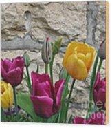 Tulips And Stone Wood Print