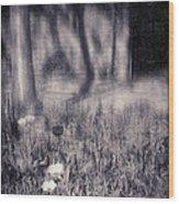 Tulips And Tree Shadow Wood Print