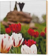 Tulips Ani Tsalagi Wood Print