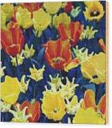 Tulips Blue Wood Print