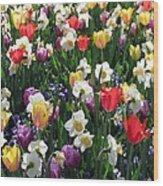 Tulips - Field With Love 58 Wood Print