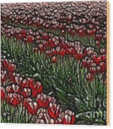 Tulips Fields Are Forever Wood Print