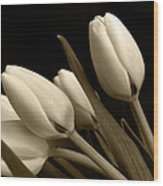 Tulips In Sepia Wood Print