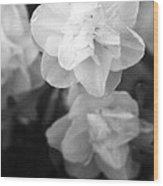 Tulips - Infrared 02 Wood Print