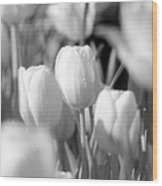 Tulips - Infrared 10 Wood Print