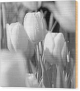 Tulips - Infrared 11 Wood Print