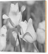 Tulips - Infrared 12 Wood Print