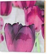 Tulips - Perfect Love - Photopower 2027 Wood Print
