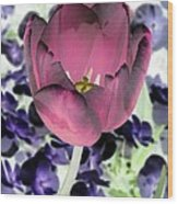 Tulips - Perfect Love - Photopower 2028 Wood Print