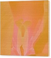 Tulips - Perfect Love - Photopower 2038 Wood Print