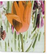 Tulips - Perfect Love - Photopower 2105 Wood Print