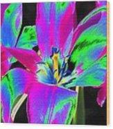 Tulips - Perfect Love - Photopower 2175 Wood Print