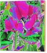 Tulips - Perfect Love - Photopower 2184 Wood Print