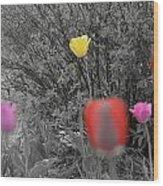 Tulips Reign Wood Print