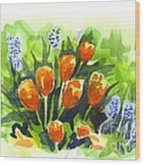 Tulips With Blue Grape Hyacinths Explosion Wood Print