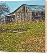 Tumbledown Wood Print by Steve Harrington
