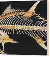 Tuna Fish Skeleton Wood Print