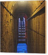 Tunnel Exit Wood Print by Carlos Caetano