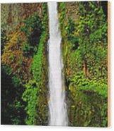 Tunnel Falls   Wood Print