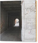 Tunnel In Venice Wood Print