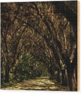 Tunnel   Wood Print by Mario Celzner