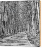 Tunnel Of Trees Black And White Wood Print