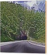 Tunnel Thru The Mountain Wood Print