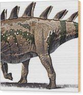 Tuojiangosaurus Multispinus Dinosaur Wood Print