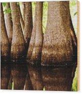 Tupelos Wood Print
