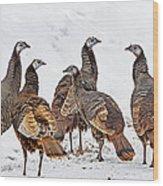 Turkey Family Standing Tall Wood Print