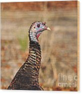 Turkey Profile Wood Print