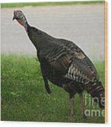Turkey Trot Wood Print