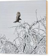 Turkey Vulture In The Snow Wood Print